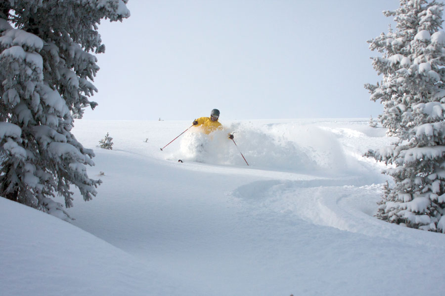Stash Pocket: Monarch's Mirkwood Basin, readers' favorite spot to cash in on untouched lines in-area. Photo: Eric Ramsey